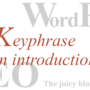 Yoast SEO assessment: Keyphrase in introduction